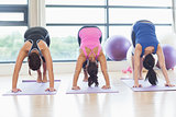 Three fit women doing the Downward Facing Dog pose