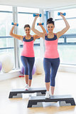 Two women performing step aerobics exercise with dumbbells