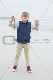Full length of a cheerful boy holding dry leaf at beach