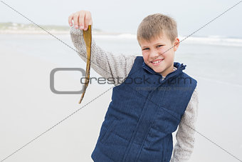 Smiling young boy holding a dry leaf at beach