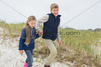 Siblings walking hand in hand at beach