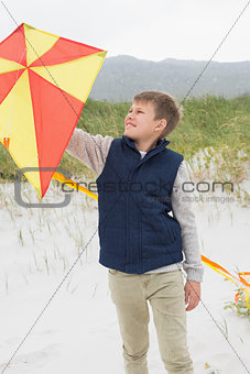 Boy looking at kite at beach