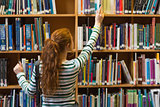 Redhead student taking book from top shelf in library