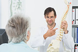 Doctor explaining the spine to patient in medical office
