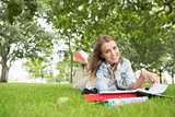 Cheerful young student studying on the grass