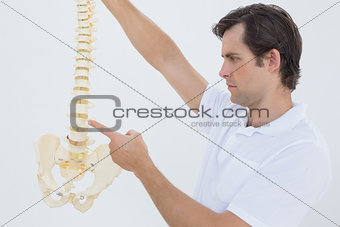 Serious male doctor with skeleton model