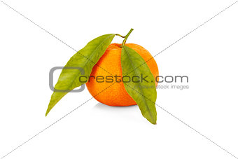 One tangerine with leaves isolayed on white background