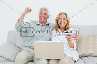 Cheerful senior couple doing online shopping at house