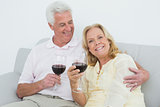 Senior couple with wine glasses at home
