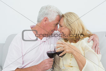 Senior couple toasting wine glasses at home