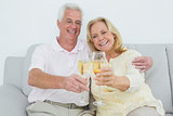 Senior couple toasting champagne flutes at home