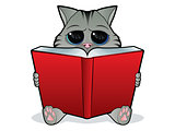 Book Reading Cat