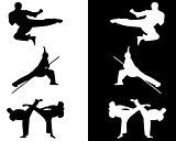 taekwondo and karate