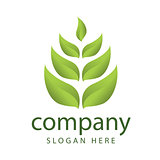 logo forest vegetation management