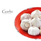 Garlic.