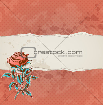 Background with torn paper and rose