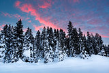 Beautiful Sunrise near Madonna di Campiglio Ski Resort, Italian