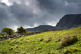 View looking up to Cadair Idris mountain landscape