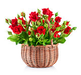 bouquet red roses in basket