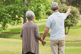 Rear view of a senior couple holding hands at park
