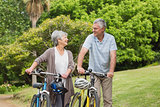 Senior couple on cycle ride