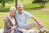 Portrait of a senior couple sitting at park