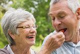 Senior woman feeding strawberry to man