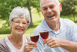 Portrait of senior couple toasting wine glasses at park