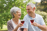 Senior couple toasting wine glasses at park
