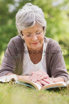 Senior woman reading a book at park