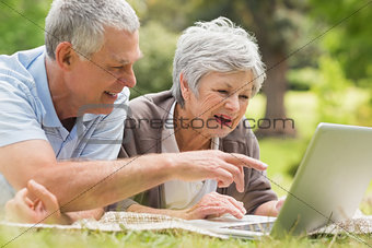 Smiling senior couple using laptop at park