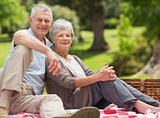 Senior couple with picnic basket at park