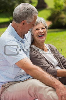 Happy senior couple sitting at park