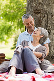 Happy relaxed senior couple sitting at park