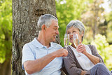 Happy senior couple toasting champagne at park