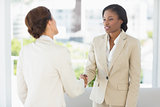 Two businesswomen meeting and shaking hands