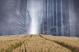 Cityscape projection over yellow fields