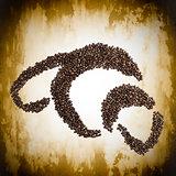 Coffee Bean Croissant