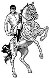 horse rider black white