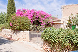 mediterranean brick entrance garden with pink flowers