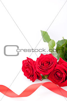 Bouquet of red roses with ribbon border