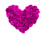 beautiful heart of pink rose petals isolated on white