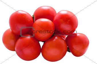 Tomato on white .
