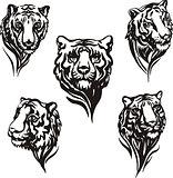 5 tiger heads