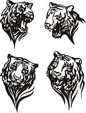 Set of tiger heads