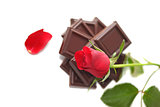 Red Rose with chocolate