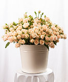 Bunch of creamy roses in a bucket on table