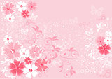 pink flowers sakura, illustrations