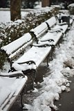 Snow on Benches