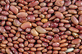 Beans, red pointed, pinto beans